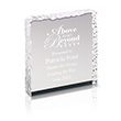 Acrylic Ice Paperweight Award
