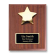 Star Performer Individual Plaque