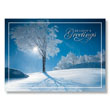 Crisp Winter Tree Holiday Card