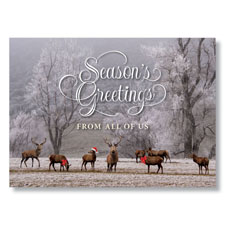 Reindeer Celebration Holiday Card