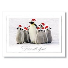 Team of Santa's Penguins Holiday Card