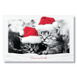 Kittens Peaceful Slumber Holiday Card