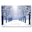 Blue Tree Path Holiday Card