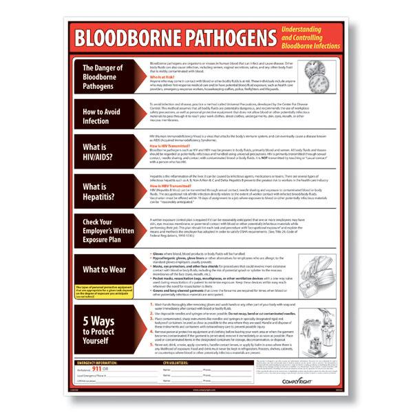 OSHA Bloodborne Pathogen Training - YouTube