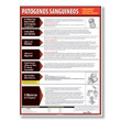 Bloodborne Pathogens Poster - Spanish