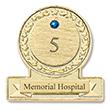 Service Award Pin Sapphire