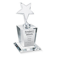 Star of Excellence Employee Award