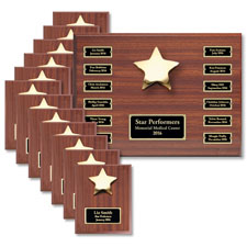 Star Performer Recognition Program Premium