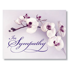 Purple Orchid Sympathy Card