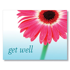 Picture of Get Well Daisy Postcard