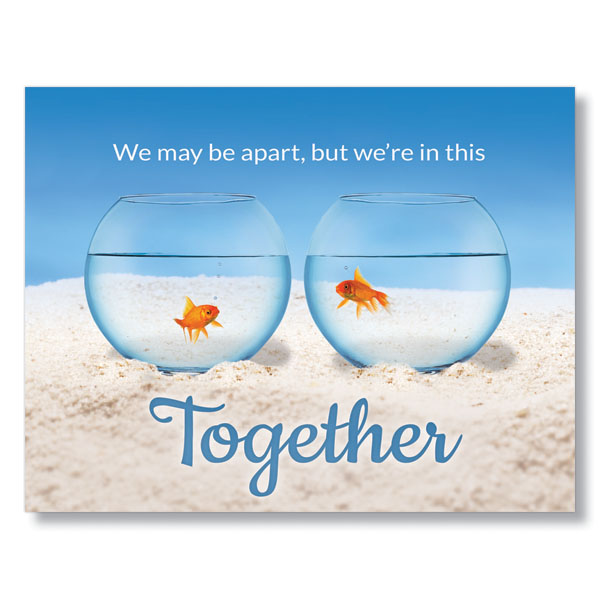 Picture of Goldfish Togetherness Postcard