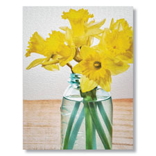 Get Well Daffodils Card