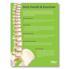 Back Health Exercises Poster English