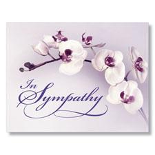 Purple Orchid Sympathy Card