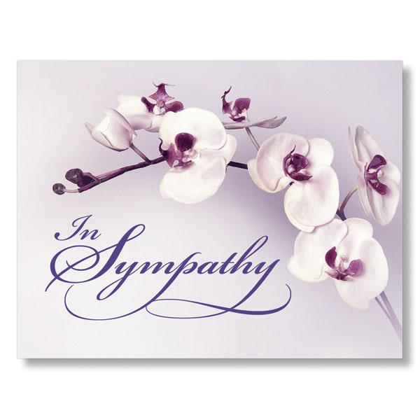 Purple orchid sympathy card m4hsunfo