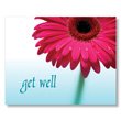 Daisy Get Well Card