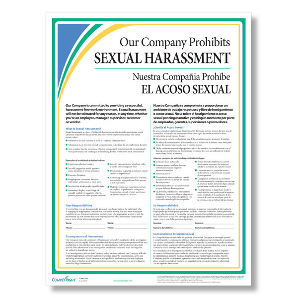 Sexual harassment in the workplace poster