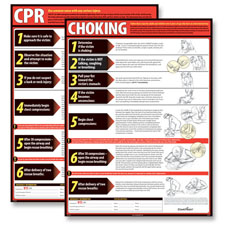 CPR and Choking Poster Set